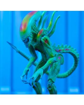 Hiya Toys AVP: 'Thermal Vision' Alien Warrio 1:18 Scale 4 Inch Acton Figure